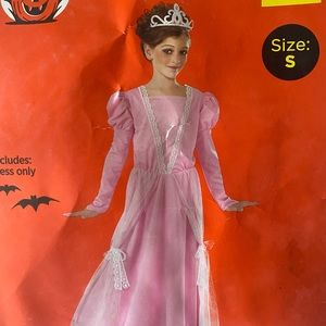 Rubies Storybook Princess Dress Halloween Costume